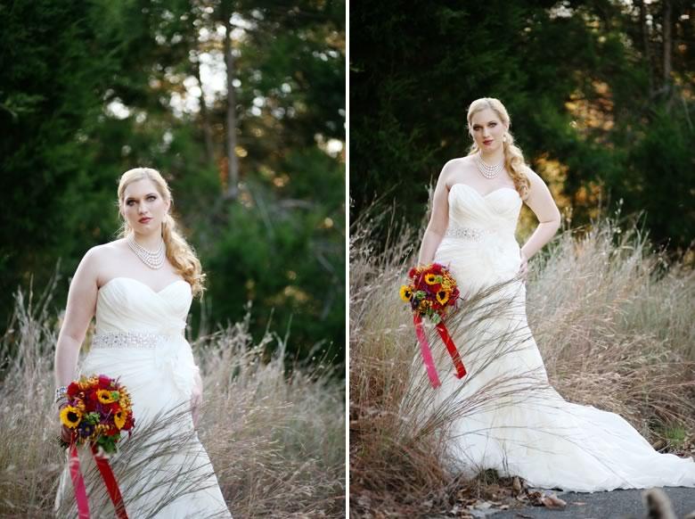 jonesborough-bridal-session (2)